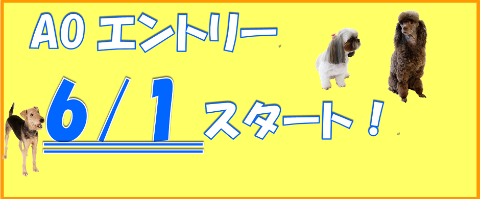 AO入試説明会開催中!!