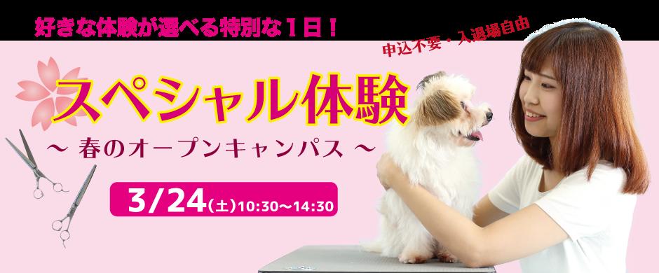 スペシャル体験開催!! ご参加お待ちしています!(^^)!