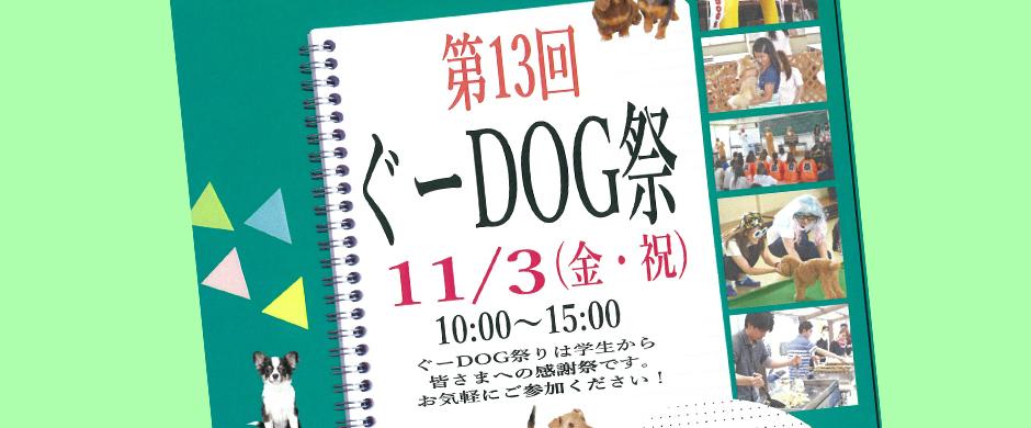 第13回ぐ-DOG祭 誰でもお気軽にご参加ください!
