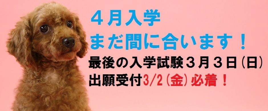 入試最終日程 3月3日(土)出願は3/2まで!!