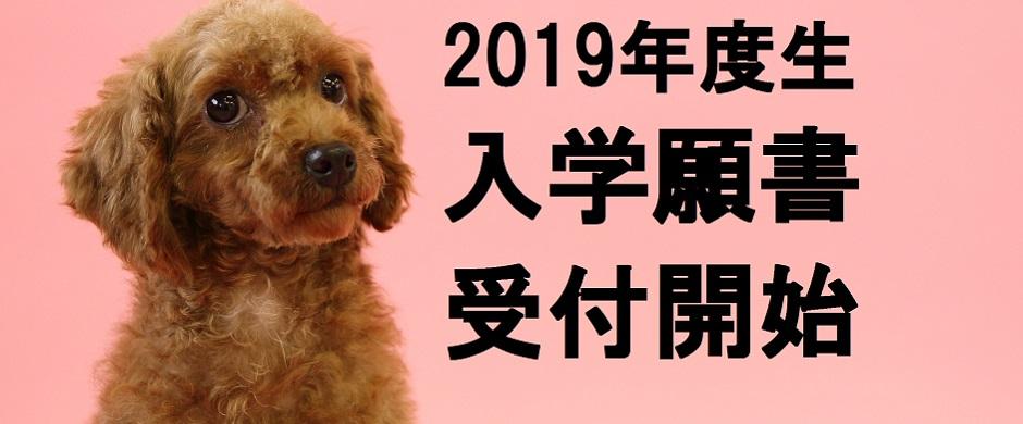 2019年度生 入学願書受付開始!!