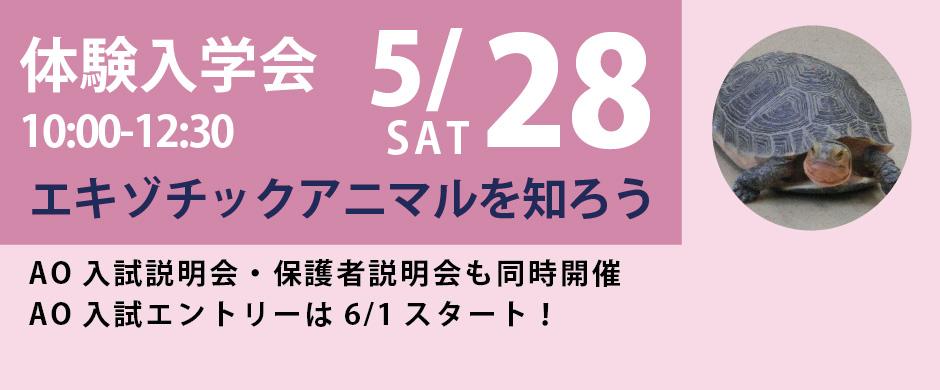 『エキゾチックアニマルを知ろう!』5/28(土)体験入学会