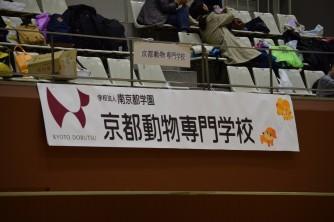 151031 バレー大会 (2)