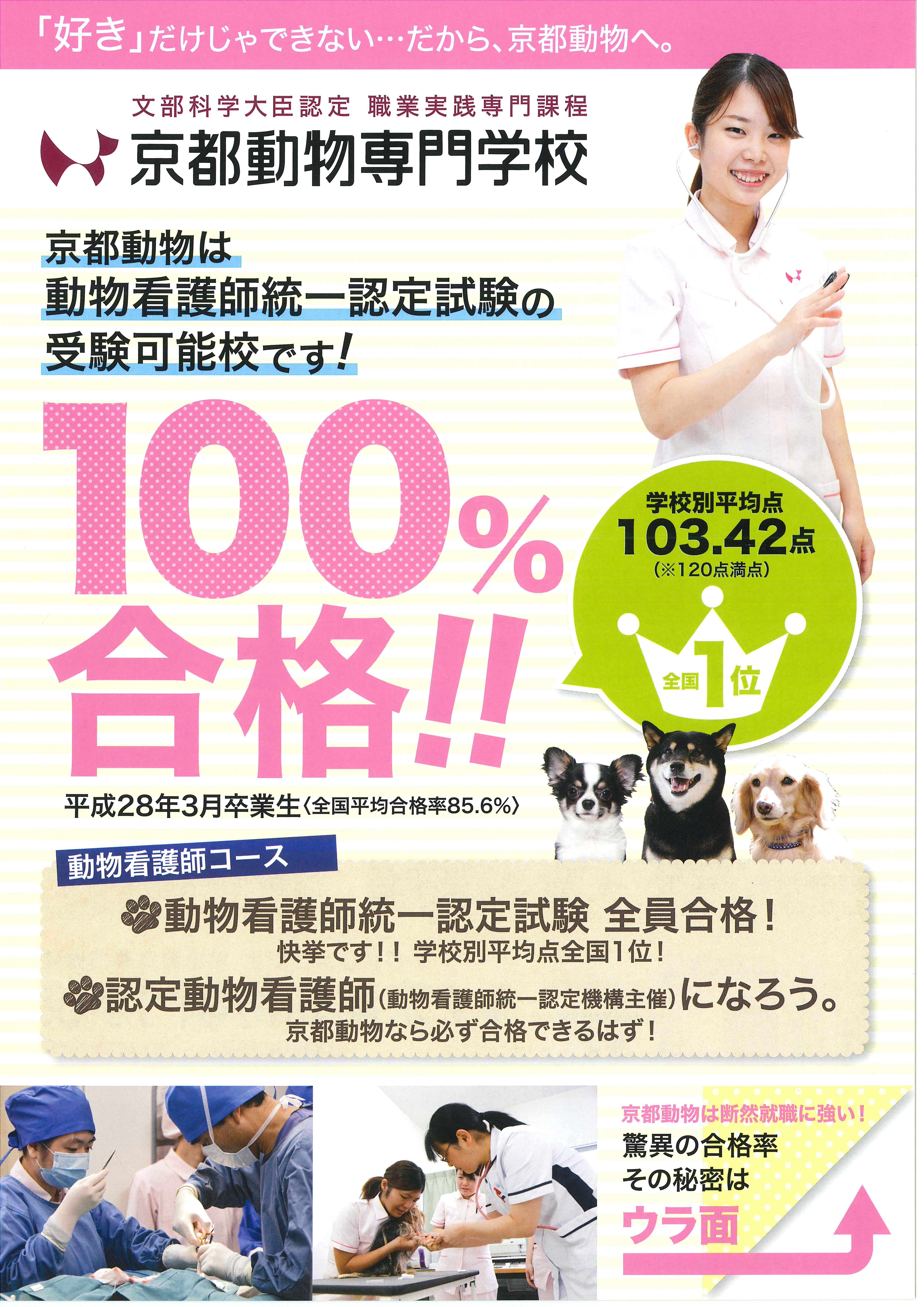 合格率100%(全国平均85.6%) 京都動物は動物看護師統一認定 ...
