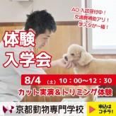 動物OC_W 体験入学会