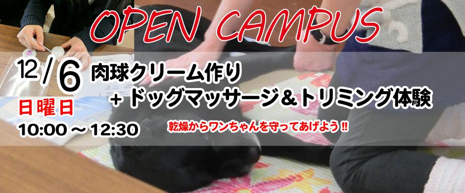 高校1.2年生の皆さん、オープンキャンは今のうちから参加しよう!(個別相談あり:駐車場利用可)