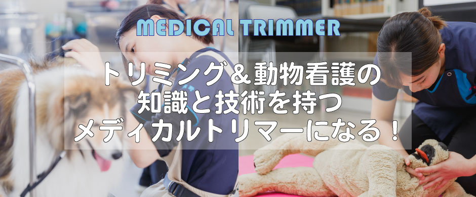 京都唯一のメディカルトリマー養成校