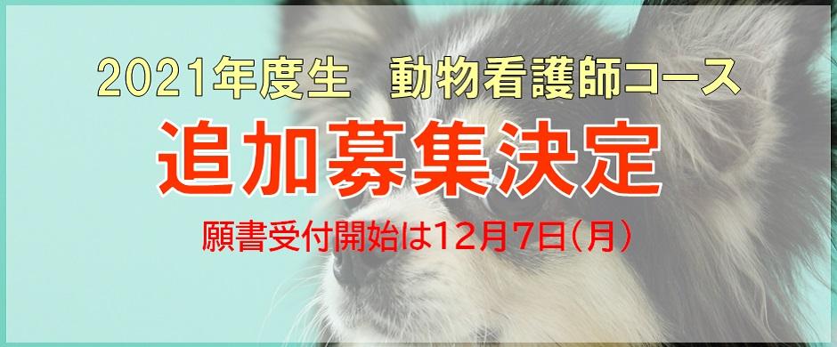 2021年度生 動物看護師コース 追加募集決定!!
