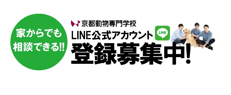 まずはここから、公式LINEを活用しよう。